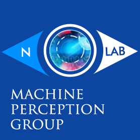 MACHINE PERCEPTION GROUP